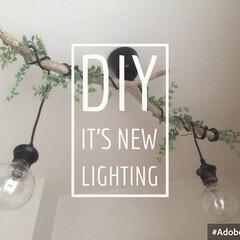 インテリア/DIY/ライティング/照明/照明器具/流木/... 流木とIKEAのライトと100均で簡単に…