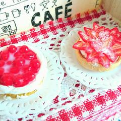手作り雑貨/ハンドメイド雑貨/ハンドメイド/ミニチュアイチゴのケーキ/ミニチュアチェリータルト/ミニチュアアップルタルト/... 娘がミニチュアパン作りにはまっているので…(2枚目)