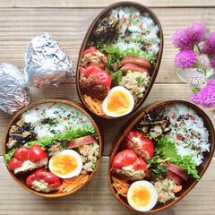 常備菜/作り置き/わっぱ/お弁当 パプリカの肉詰め弁当♩
