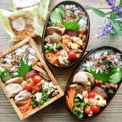 常備菜/作り置き/わっぱ/お弁当 鶏むね肉の旨味焼き弁当♩