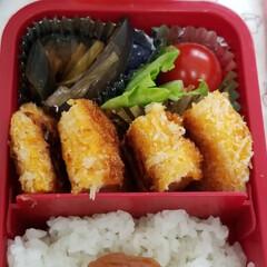 サラダうどん/サンドイッチ/お弁当/おうちごはん おはようございます☔  今日は朝から雨降…(4枚目)