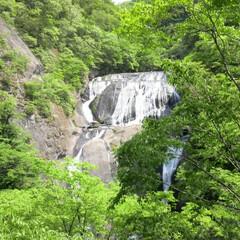 マイナスイオンたっぷり/癒しの時間/袋田の滝/田舎の風景/茨城県/滝/... 田舎の近くにある袋田の滝 マイナスイオン…