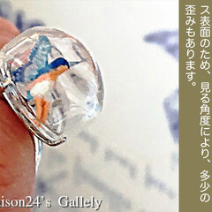 妖精/指輪の妖精/半透明の翅/ハンドメイド 妖精標本商会Floraison24'Ga…