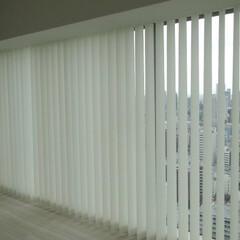 バーチカルブラインド/縦型ブラインド/電動/タチカワ/タチカワブラインド/ホームタコス モールを這わせて窓下のコンセントから電源…