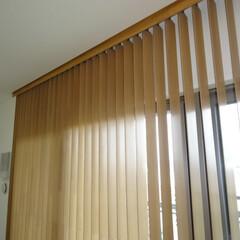 ブラインド/バーチカルブラインド/縦型ブラインド/ウッドバーチカル/木製ブラインド 詳しくは社長ブログをご覧ください。 写真…