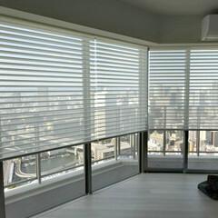 ロールスクリーン/調光ロールスクリーン/FUGA/マンション/タワーマンション FUGA6台連窓取付 詳しくは社長ブログ…