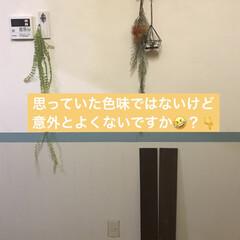 漆喰DIY/なんちゃって腰板&腰壁/ベニヤ板/腰板風/リノベーション/DIY/... 今日は、キッチンとリビングの壁 (キッチ…(3枚目)