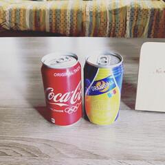 ナイスアイデア/シリカゲル/ドライフラワー/缶リメイク/簡単/雑貨/... homestay中にお家🏠のお花とわんこ…(5枚目)
