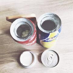 ナイスアイデア/シリカゲル/ドライフラワー/缶リメイク/簡単/雑貨/... homestay中にお家🏠のお花とわんこ…(6枚目)