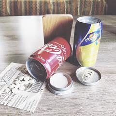 ナイスアイデア/シリカゲル/ドライフラワー/缶リメイク/簡単/雑貨/... homestay中にお家🏠のお花とわんこ…(7枚目)