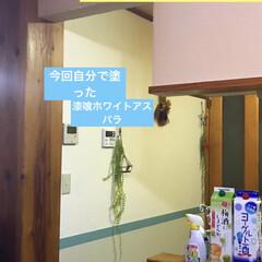 漆喰DIY/なんちゃって腰板&腰壁/ベニヤ板/腰板風/リノベーション/DIY/... 今日は、キッチンとリビングの壁 (キッチ…(5枚目)
