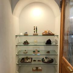 無垢の扉/無垢フローリング/お片付け/ディスプレイ棚/自然素材の家/インテリア雑貨/... ガラス棚ニッチのある素敵なインテリア✨ …