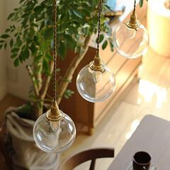 インテリア/家具/照明/ガラス/ナチュラル/コーディネート/... 真鍮ソケットと小ぶりな丸いガラスシェード…