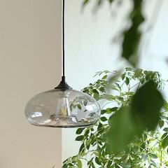 インテリア/照明/ガラス/カフェ/店舗 スモーキーなグレーガラスを使った楕円形デ…