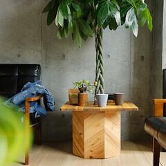 インテリア/ガーデン/アウトドア/テラス/観葉植物 Hang OutのPlants Boxは…