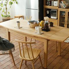 インテリア/家具/テーブル/ダイニング/食卓 ドローリーフ型のダイニングテーブル