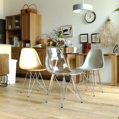 インテリア/家具/チェア/椅子 /北欧/ミッドセンチュリー/... 安定感を持たせたスチールロッド脚。美しさ…