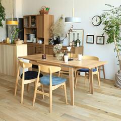 インテリア/家具/ダイニング/食卓 天然木アッシュ材の温かみを感じる木目の主…(1枚目)