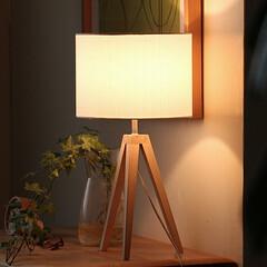 照明/間接照明/北欧/インテリア オブジェのようなデザインとスッキリした印…