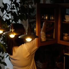 照明/ペンダントライト/インテリア/雑貨/真鍮/おしゃれ/... 薄型の真鍮製プラスゴールドシェードと真鍮…