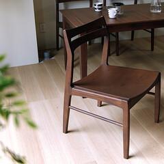 インテリア/食卓/イス/家具/ダイニングチェアー/アカシア 温かみのある木目が特徴のアカシア材をふん…