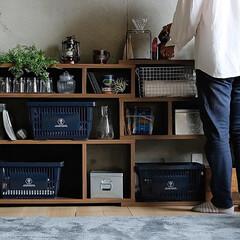 インテリア/家具/収納/カフェ/ショップ/ディスプレイ 自由度の高い伸縮・角度調節で置きたいスペ…