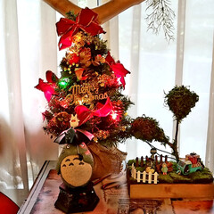 雑貨のある暮らし/多肉大好きおじさん/緑のある暮らし/ジブリのある暮らし/おうち/2018/... 皆さん良いクリスマスをお過ごしください🎄…