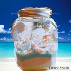 貝殻/夏の雑貨/DIY/インテリア/住まい 夏のインテリ作ってみました🏖️ 気持ちだ…