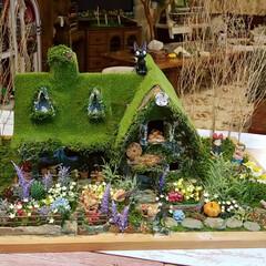 楽しかった/苔屋敷/緑のある暮らし/魔女の宅急便/手作り/ミニチュアハウス/... 出来たーーーー‼️出来た出来た‼️ ダン…(9枚目)