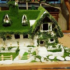 家/てっちゃんDIY/ジブリワールド/作業中/ハンドメイド/ミニチュアハウス/... 次はモスを使ってコケの雰囲気を出してます…