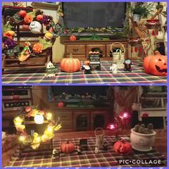 秋の夜/ライトアップ/アイテム/ハロウィン/インテリア 夜にライト点けると、こんなに🎃✨雰囲気出…
