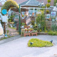 長崎から/植木鉢避難/台風接近中‼️/住まい おはようございます‼ 皆さん台風⚡🌀☔の…