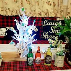 クリスマスツリー/サンゴ/シーグラス/DIY/ハンドメイド/住まい サンゴとシーグラスのクリスマスツリーイル…(2枚目)