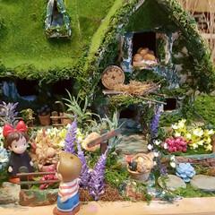 楽しかった/苔屋敷/緑のある暮らし/魔女の宅急便/手作り/ミニチュアハウス/... 出来たーーーー‼️出来た出来た‼️ ダン…(3枚目)