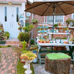 長崎から/植木鉢避難/台風接近中‼️/住まい おはようございます‼ 皆さん台風⚡🌀☔の…(2枚目)