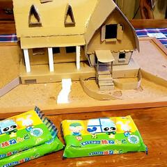 紙粘土/魔女の宅急便/ダンボールDIY/DIY/雑貨 次は紙粘土を使って全体的に強化しています…(3枚目)