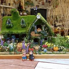 楽しかった/苔屋敷/緑のある暮らし/魔女の宅急便/手作り/ミニチュアハウス/... 出来たーーーー‼️出来た出来た‼️ ダン…