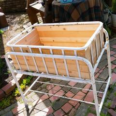 多肉ちゃん寄せ植え/多肉ちゃんのベッド作り/多肉ちゃん/GW/DIY/わたしの手作り 多肉ちゃんのベッドを作ってみました。そし…