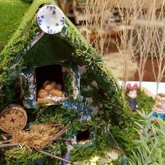 楽しかった/苔屋敷/緑のある暮らし/魔女の宅急便/手作り/ミニチュアハウス/... 出来たーーーー‼️出来た出来た‼️ ダン…(7枚目)
