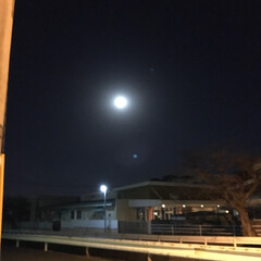 スーパームーン/満月🌕 今夜は満月🌕スーパームーンだよー💕🌕💕🌕(2枚目)