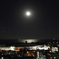 スーパームーン/満月🌕 今夜は満月🌕スーパームーンだよー💕🌕💕🌕