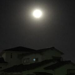 スーパームーン/満月🌕 今夜は満月🌕スーパームーンだよー💕🌕💕🌕(3枚目)