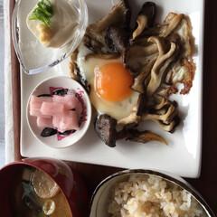 きのこ/フード/おうちごはん/おうちごはんクラブ 今日の朝ご飯😊💕 平茸、舞茸のバター炒め…
