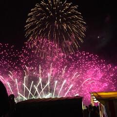 お祭り/花火/おでかけ 今日8時から花火でした。 ギリギリ7時過…