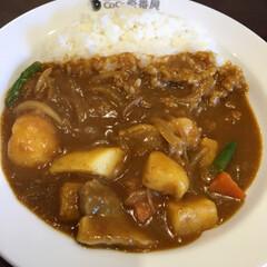 ココイチ/ランチ/グルメ/フード お昼ご飯にカレーのココイチ🍛に来ました💕…(1枚目)
