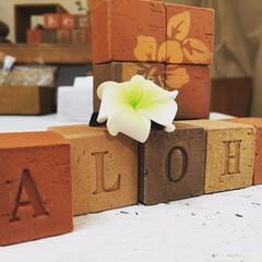 キューブ煉瓦/アルファベットオブジェ 30×30×30弱の立方体にアルファベッ…