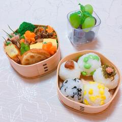 秋色お弁当/おにぎり/お弁当 5色おにぎり弁当🍙