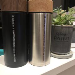 オシャレ水筒/水筒/キッチン/キッチン雑貨/雑貨/インテリア/... 水筒と小さな観葉植物