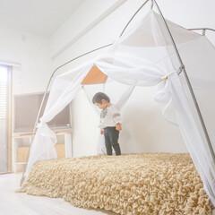 IKEA/リビング/蚊帳/テント/おうちテント/韓国インテリア/... おうちテント(1枚目)