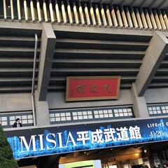 ありがとう平成 武道館、平成最後のライブ